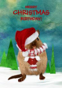 Christmas Birthday Images.Merry Christmas Birthday Cards Zazzle Com Au