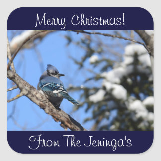 Merry Christmas Blue Jay Stickers