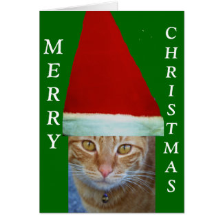 Merry Christmas_Card Greeting Card