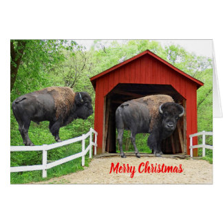 Merry Christmas Funny Buffalo Red Covered Bridge Card