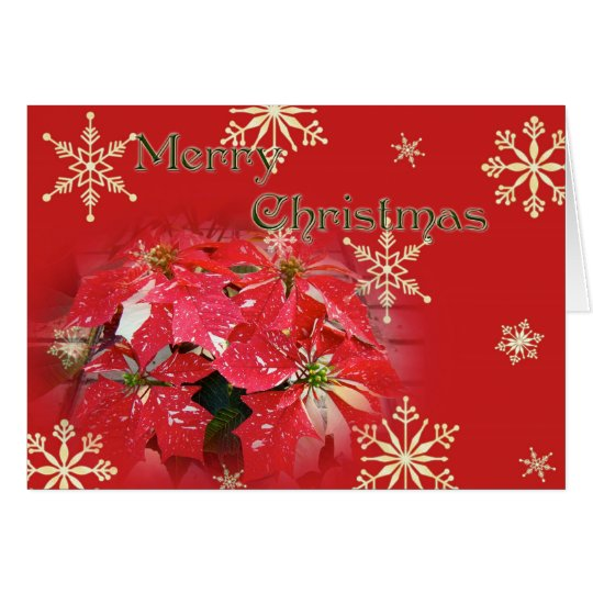 Merry Christmas Greeting Card - Red Poinsettia