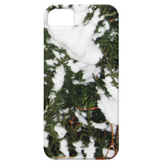Merry Christmas  Holiday celebrations Santa Christ Case For iPhone 5/5S