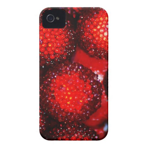 Merry Christmas  Holiday celebrations Santa Clause Case-Mate iPhone 4 Cases