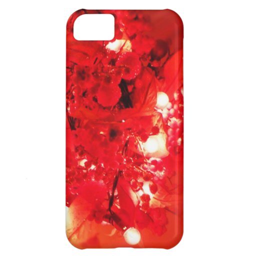 Merry Christmas  Holiday celebrations Santa Clause iPhone 5C Cases