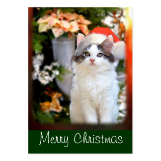 Merry Christmas Kitten Gift Tags Pack Of Chubby Business Cards