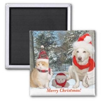 Merry Christmas! Fridge Magnet