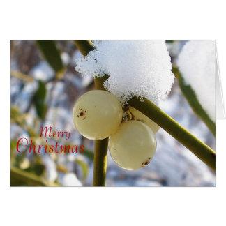 Merry Christmas(Mistletoe Berries) Greeting Card