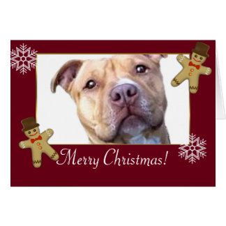 Merry Christmas Pitbull Dog Card