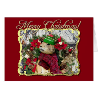 Merry Christmas  Prairie Dog Card