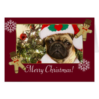 Merry Christmas pug dog Card