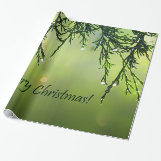 Merry Christmas Raindrops on Evergreen Tree Wrapping Paper