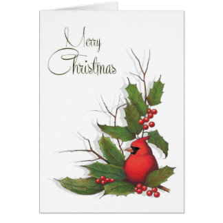 Merry Christmas, Red Cardinal Bird, Holly, Berries Card