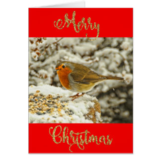 Merry Christmas Robin in Snow Photo Card