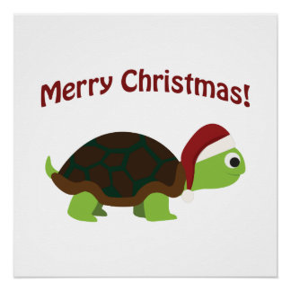 Merry Christmas! Santa Turtle