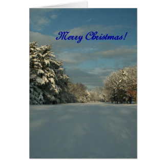 Merry Christmas!  Snow scene! Greeting Card