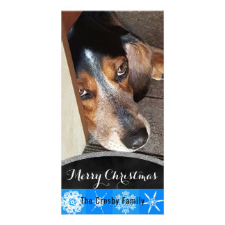 Merry Christmas Snowflakes | Pet Photo Beagle Dog Card