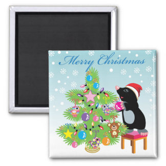 Merry Christmas Square Magnet