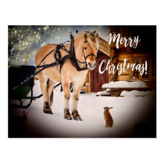 Merry Christmas starry night farm with horse snow Postcard