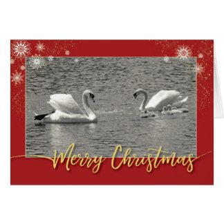 Merry Christmas Swan Family Card