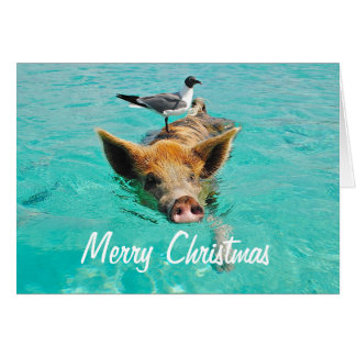 Merry Christmas Swimming Pig Card
