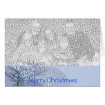 Merry Christmas Trees -