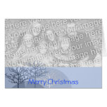 Merry Christmas Trees - Greeting Card