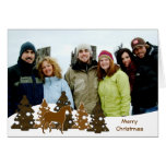 Merry Christmas Trees & Horse