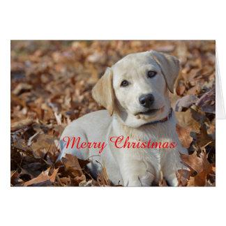 Merry Christmas Yellow Labrador Retriever Card