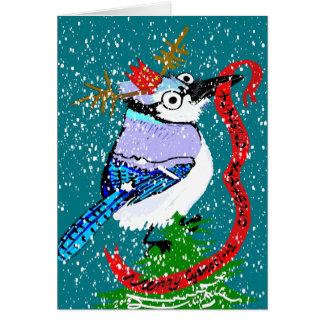 Merry Cyanocitta cristata cristatamas! Card