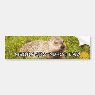 Merry Groundhog Day  bumper sticker