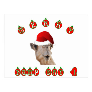 Merry Hump Day Hump Day Camel Postcard
