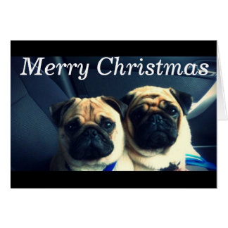 Merry pug xmas greeting card