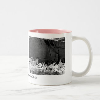 Mesa Verde National Park 2 Pictures Two-Tone Mug