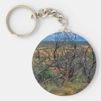 """Mesa Verde National Park"" collection Basic Round Button Key Ring"