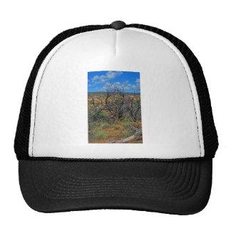 """Mesa Verde National Park"" collection Hat"
