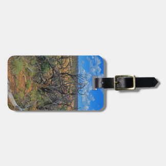 Mesa Verde National Park collection Tags For Bags
