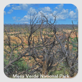 """Mesa Verde National Park"" collection Square Sticker"
