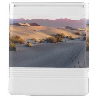 Mesquite Flat sand dunes Death Valley Cooler