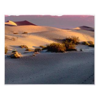 Mesquite Flat sand dunes Death Valley Photo Print