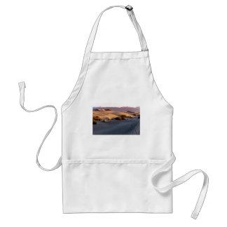 Mesquite Flat sand dunes Death Valley Standard Apron