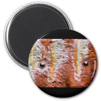 metal eyes rust magnet