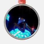 metal praying mantis - 1.jpg Silver-Colored round decoration