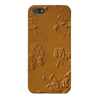 Metallic Bronze Case For The iPhone 5