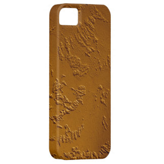Metallic Bronze iPhone 5 Case