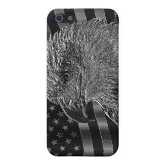 Metallic Eagle And American Flag iPhone 5 Cover
