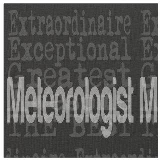 Meteorologist Extraordinaire Fabric