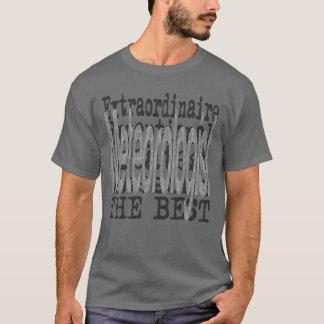 Meteorologist Extraordinaire T-Shirt