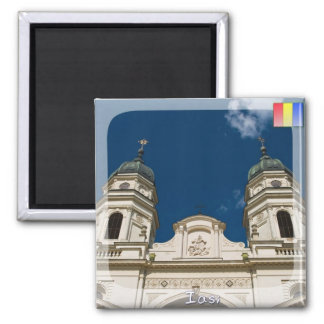 Metropolitan cathedral magnet