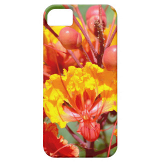 Mexican Bird of Paradise Case For The iPhone 5