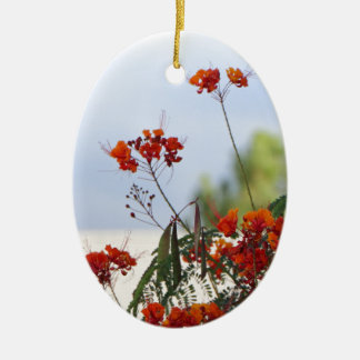 Mexican Bird of Paradise Ceramic Oval Decoration